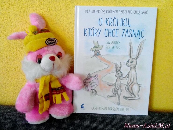 o króliku, który chce zasnąć okładka książki recenzja